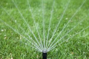 Анализ воды для полива