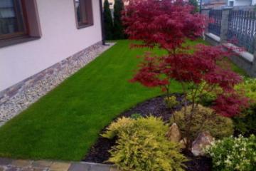 Посев, укладка рулонного газона или гидропосев?